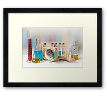 Working at the Laboratory Framed Print