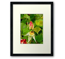 The Faded And The Glory Framed Print