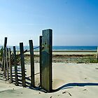 Fence on a Beach by Mike Oliver