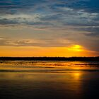 Just another South Carolina Sunset by Mike Oliver
