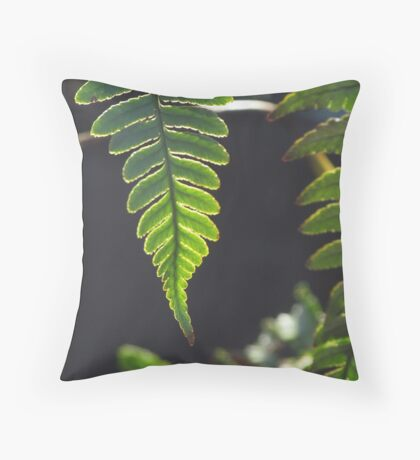 Fern Light and Shadow Throw Pillow