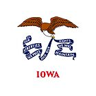 Iphone Case - State Flag of Iowa - Horizontal by Mark Podger