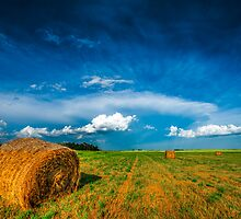 Under Prairie Skies XIX by Ian McGregor