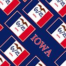 Iphone Case - State Flag of Iowa - Patchwork Blue Diagonal by Mark Podger