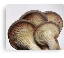 Mushroom Crowd Metal Print
