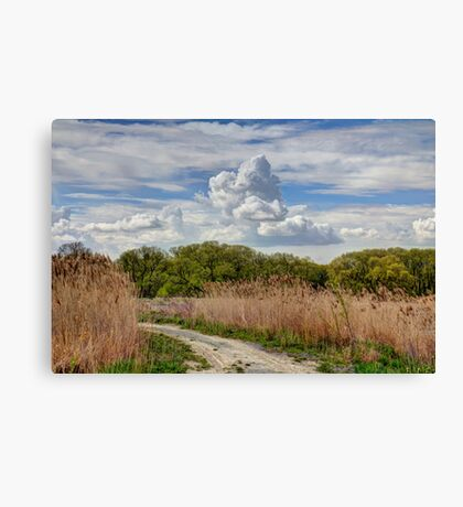 My Playground  Canvas Print
