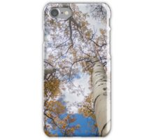 Worm's Eye of Aspens iPhone Case/Skin