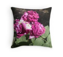 Aging of the beautiful and gifted Throw Pillow