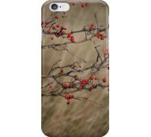 Autumnal Impression iPhone Case/Skin