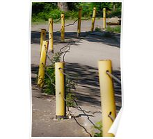Poles in a Row Poster