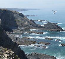 Dragon rocks and seagulls by juliedawnfox