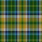02360 Contra Costa County, California District Tartan Fabric Print Iphone Case by Detnecs2013