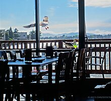 Table with a view of the Bay by David Denny