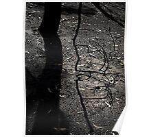 Cherryville Horror #6 Poster