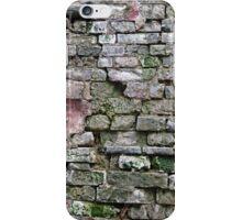 Brickwork iPhone Case/Skin