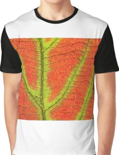 Close up Of Leaf Graphic T-Shirt