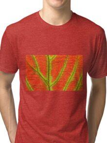 Close up Of Leaf Tri-blend T-Shirt