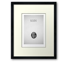 katunga walnuts Framed Print