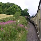 West Somerset Railway by lezvee