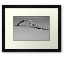 Driftwood at lowtide Framed Print