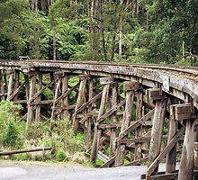 Trestle Bridge by mattsavage