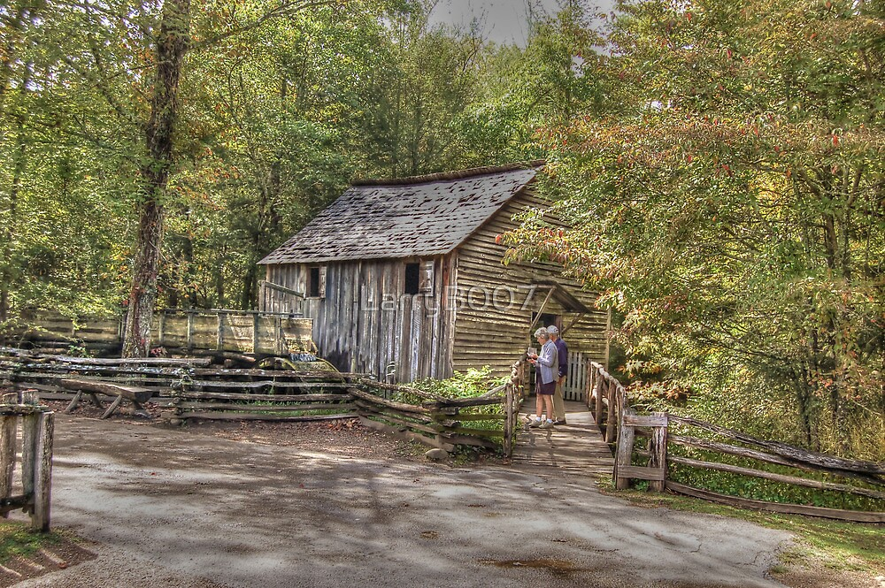 Vacation in The Smokies by LarryB007