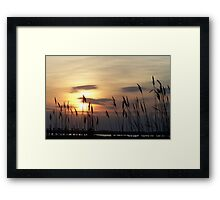Evening on the Bay Framed Print