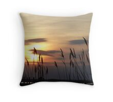 Evening on the Bay Throw Pillow