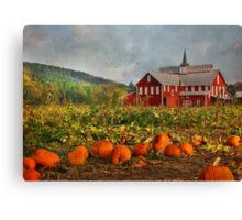 Country Pumpkins Canvas Print
