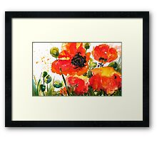 Kate's Poppys Framed Print