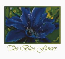 The Blue Flower by Nira Dabush