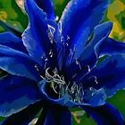 Nature in Blues & Greens by Nira Dabush