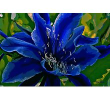 Nature in Blues & Greens Photographic Print