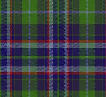 02332 Riverside County, California E-fficial Fashion Tartan Fabric Print Iphone Case by Detnecs2013