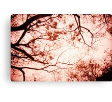 Of Trees, Leaves and Branches - Lomo Canvas Print