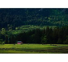 Cabin at Cowichan Photographic Print