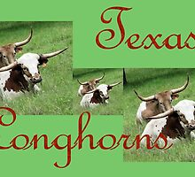 Texas Longhorns Collage by aprilann