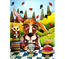 The Brown Rabbit Photographic Print