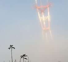 Morning Fog at Sutro Tower by BrightFogPhoto