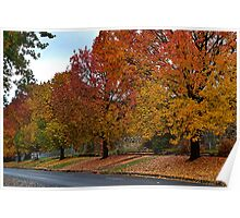 Autumn Colours, Bright. Vic Poster