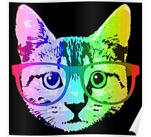 Funny Rainbow Cat Poster