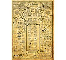 Death Chart Photographic Print