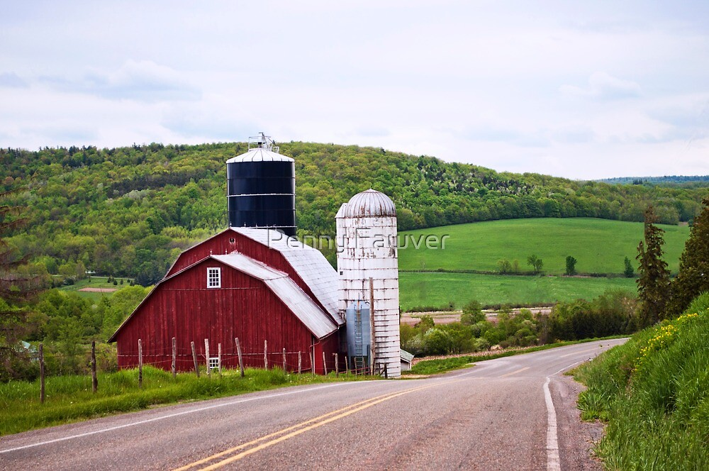 Country scene by Penny Rinker