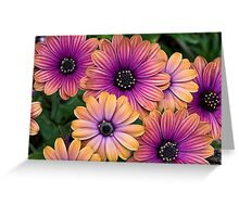 Colored Miracles Greeting Card