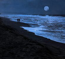 Gazing At The Moon by Diane Schuster