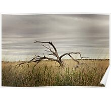 Pilbara Landscapes Poster