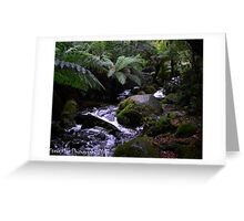 Cement Creek Greeting Card