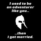 I used to be an adventurer like you, then I got married by HeavenGirl