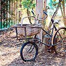 Old Timer by Jenny Dean
