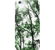 Summer Forest View  iPhone Case/Skin